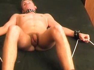 are not blonde pro deepthroats dick commit error. can prove