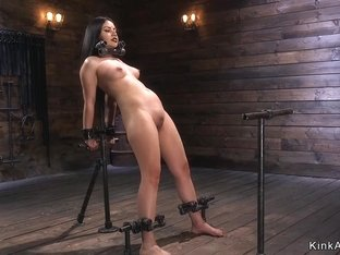 Goth beauty in device bondage whipped