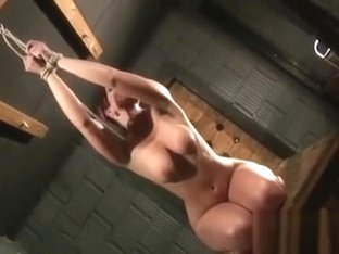 Coarse Play In Bdsm Scenes With Tractable Woman In Heats